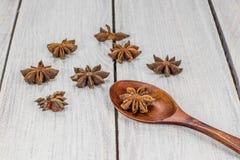 Γλυκάνισο αστεριών σε ένα ξύλινο κουτάλι Στοκ φωτογραφία με δικαίωμα ελεύθερης χρήσης
