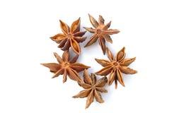 Γλυκάνισο αστεριών Στοκ εικόνες με δικαίωμα ελεύθερης χρήσης