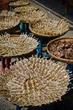 Γλυκά αποξηραμένα ψάρια με το σουσάμι Στοκ Εικόνες