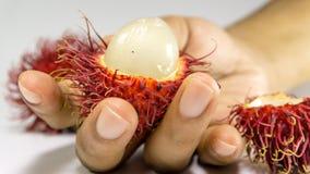 Γλυκά εύγευστα φρούτα Rambutan στοκ εικόνα