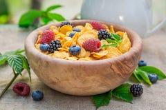 Γλυκά δημητριακά με τα φρούτα γάλακτος και μούρων Στοκ Εικόνα