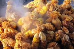 Γλυκά δημητριακά Στοκ εικόνα με δικαίωμα ελεύθερης χρήσης