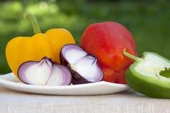 Γλυκά πιπέρια και κρεμμύδια Στοκ φωτογραφία με δικαίωμα ελεύθερης χρήσης