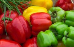 Γλυκά πιπέρια κουδουνιών Στοκ φωτογραφία με δικαίωμα ελεύθερης χρήσης
