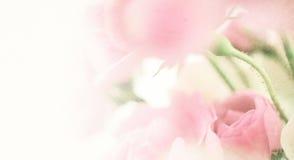 Γλυκά τριαντάφυλλα χρώματος στο εκλεκτής ποιότητας ύφος Στοκ φωτογραφία με δικαίωμα ελεύθερης χρήσης