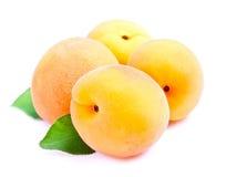 Γλυκά φρούτα βερίκοκων στοκ φωτογραφία