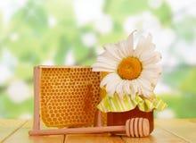 Γλυκές μέλι και κηρήθρα Στοκ φωτογραφία με δικαίωμα ελεύθερης χρήσης