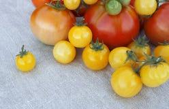 Γλυκές φρέσκες νόστιμες οργανικές κίτρινες ντομάτες κερασιών, νέα συγκομιδή στο ύφασμα λινού Στοκ Εικόνες