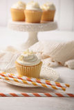 Γλυκιά βανίλια cupcake με τα άχυρα Στοκ φωτογραφία με δικαίωμα ελεύθερης χρήσης