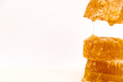 Γλυκιά κηρήθρα, που απομονώνεται στο άσπρο υπόβαθρο, στάλαγμα μελιού στοκ εικόνα με δικαίωμα ελεύθερης χρήσης