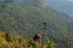 Γλυκιά νέα συνεδρίαση μαζί στο βουνό στοκ φωτογραφία με δικαίωμα ελεύθερης χρήσης