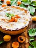 Γλυκιά πίτα βερίκοκων Στοκ Εικόνες