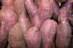 Γλυκιά πατάτα, ομάδα γλυκών πατατών στοκ εικόνες