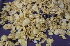 γλυκιά προγευμάτων πλήρης έννοια καρυδιών σιταριών nutritients caramal Στοκ φωτογραφίες με δικαίωμα ελεύθερης χρήσης
