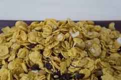 γλυκιά προγευμάτων πλήρης έννοια καρυδιών σιταριών nutritients caramal Στοκ Εικόνες