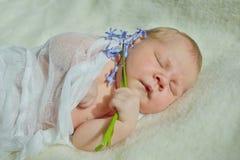 Γλυκός λίγα νεογέννητα Στοκ εικόνα με δικαίωμα ελεύθερης χρήσης