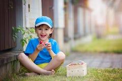 Γλυκός λατρευτός λίγο παιδί, αγόρι που τρώει τις φράουλες, καλοκαίρι Στοκ φωτογραφία με δικαίωμα ελεύθερης χρήσης