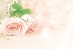 Γλυκός αυξήθηκε λουλούδια για το ρωμανικό υπόβαθρο αγάπης Στοκ εικόνα με δικαίωμα ελεύθερης χρήσης