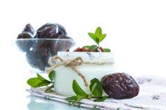 Γλυκό γιαούρτι γάλακτος με τα δαμάσκηνα Στοκ Φωτογραφία