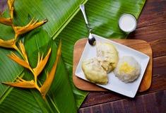 Γλυκό επιδορπίων ρυζιού Durian στοκ φωτογραφίες