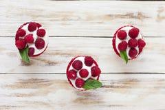 Γλυκό επιδόρπιο μικροπράγματος με τα σμέουρα Στοκ φωτογραφία με δικαίωμα ελεύθερης χρήσης