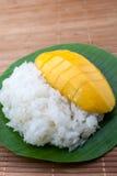 Γλυκό κολλώδες ρύζι επιδορπίων με το γάλα καρύδων μάγκο Στοκ φωτογραφία με δικαίωμα ελεύθερης χρήσης