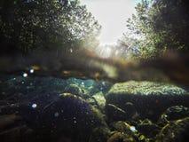 Γλυκό νερό Στοκ Εικόνες