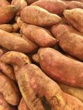 γλυκό πατατών Στοκ εικόνες με δικαίωμα ελεύθερης χρήσης