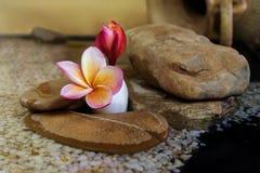 Γλυκό ρόδινο κίτρινο plumeria ή frangipani λουλουδιών στο βράχο ι χαλικιών Στοκ εικόνες με δικαίωμα ελεύθερης χρήσης