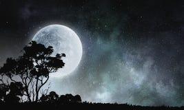 Γλυκό όνειρο νύχτας Μικτά μέσα Στοκ Εικόνες