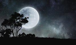 Γλυκό όνειρο νύχτας Μικτά μέσα Στοκ φωτογραφίες με δικαίωμα ελεύθερης χρήσης
