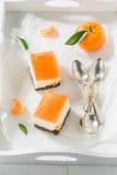 Γλυκό cheesecake φιαγμένο από ζελατίνα και μανταρίνι Στοκ φωτογραφία με δικαίωμα ελεύθερης χρήσης