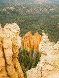 Γλυπτά βράχου φαραγγιών του Bryce Στοκ Εικόνες