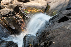 Γλυπτικές πετρών Spean Kbal Στοκ φωτογραφία με δικαίωμα ελεύθερης χρήσης