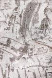 Γλυπτικές Adnate σε έναν κορμό φοινικών Στοκ εικόνα με δικαίωμα ελεύθερης χρήσης