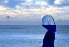 Γλυπτό θαλασσίως σε Bondi Στοκ εικόνα με δικαίωμα ελεύθερης χρήσης