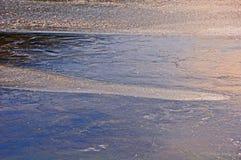 Γλυπτό πάγου λιμνών κρίνων στοκ φωτογραφία με δικαίωμα ελεύθερης χρήσης