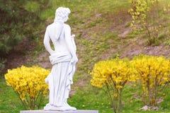 Γλυπτό στο κλασικό ύφος Άγαλμα ενός κυνηγού ατόμων με το τόξο στο πάρκο Στοκ φωτογραφίες με δικαίωμα ελεύθερης χρήσης