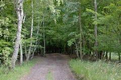 Δάση γύρω από το χωριό - PoÄ  úvadlo Στοκ Εικόνες