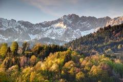 Δάση κάτω από τη χιονώδη κορυφογραμμή Wettersteinwand στη Βαυαρία Γερμανία στοκ εικόνες με δικαίωμα ελεύθερης χρήσης