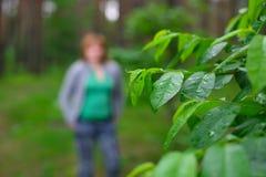 δάση κοριτσιών Στοκ Εικόνα