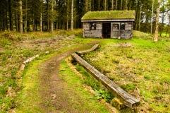 δάση κούτσουρων καμπινών Στοκ Φωτογραφία