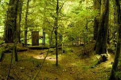 δάση λουτρών Στοκ εικόνα με δικαίωμα ελεύθερης χρήσης