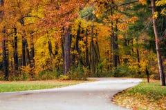 δάση μονοπατιών φθινοπώρο&upsi Στοκ φωτογραφία με δικαίωμα ελεύθερης χρήσης
