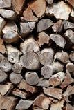 Δάση πυρκαγιάς Στοκ εικόνες με δικαίωμα ελεύθερης χρήσης