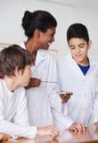 Δάσκαλος που εξετάζει το σπουδαστή πειραματιμένος Στοκ Εικόνες