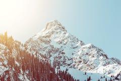 Δάσος έλατου τοπίων χειμερινών βουνών ανατολής Στοκ εικόνα με δικαίωμα ελεύθερης χρήσης