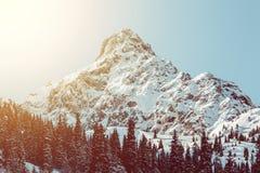 Δάσος έλατου τοπίων χειμερινών βουνών ανατολής Στοκ φωτογραφίες με δικαίωμα ελεύθερης χρήσης