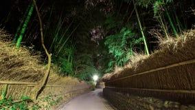 Δάσος αλσών μπαμπού τη νύχτα, Arashiyama Στοκ Εικόνες