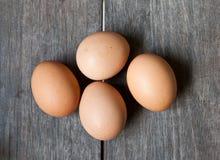 δάσος αυγών Στοκ εικόνες με δικαίωμα ελεύθερης χρήσης